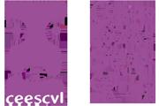 CEESCYL Colegio Profesional de Educadores y Educadoras Sociales de Castilla y León